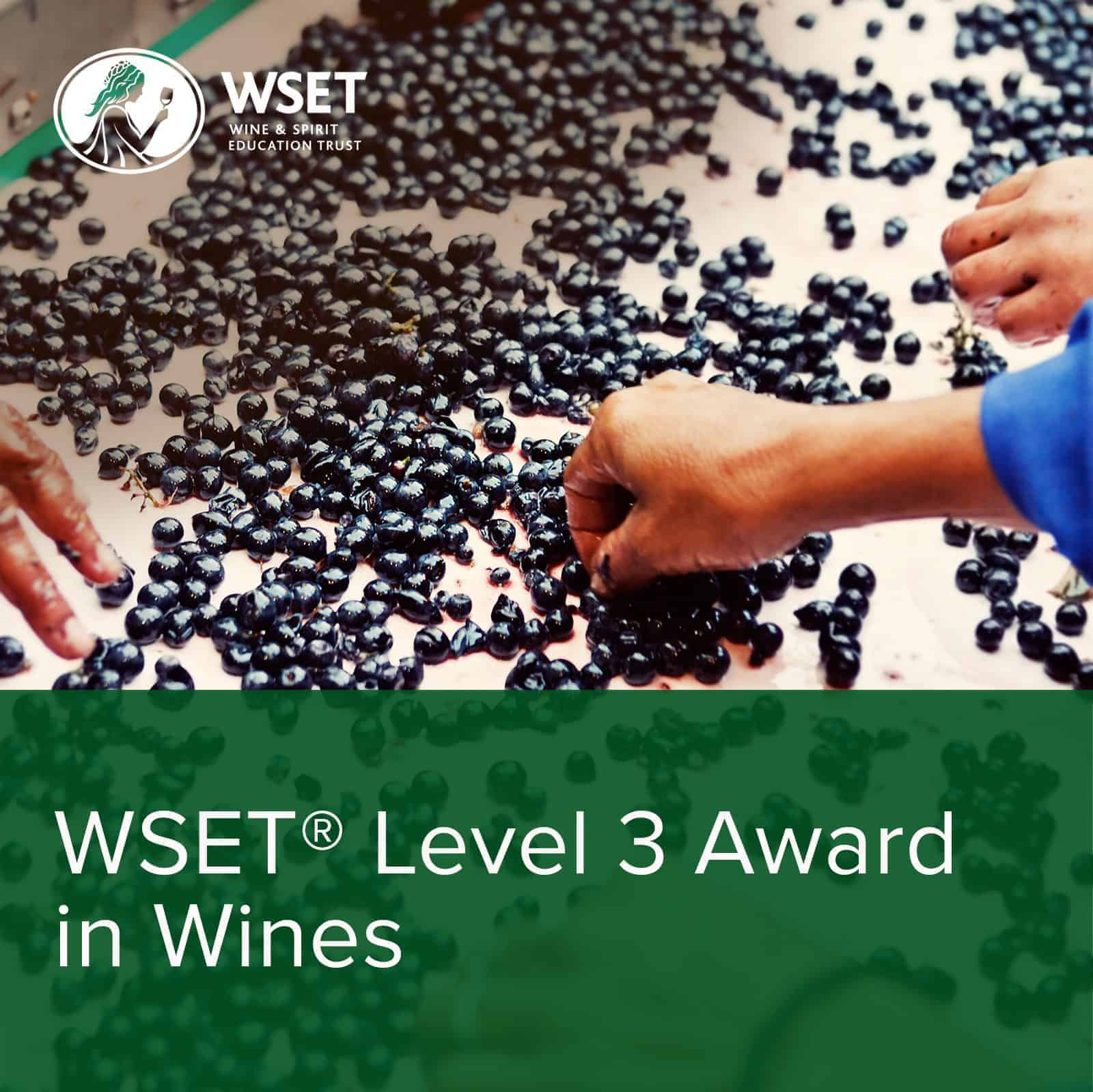 WSET Level 3 Award in Wines - Rack and Return